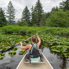 Canadian Wilderness Adventures: Canoe Tour