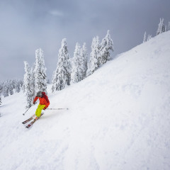 Revelstoke Mountain Resort Skiing