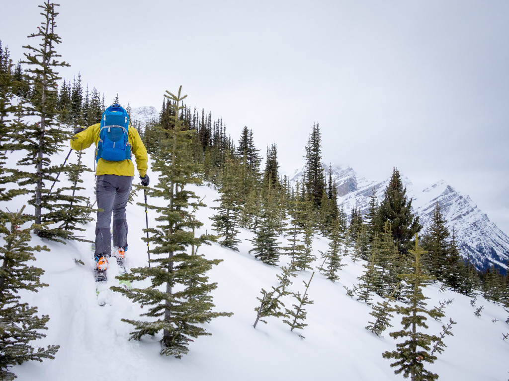 Skiing off the Icefields Parkway in Alberta.