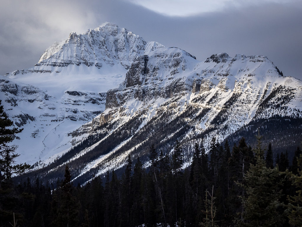 Views along the Icefield Parkway