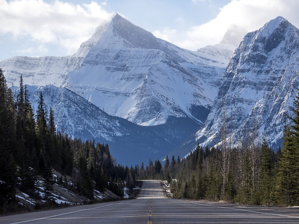Driving the Icefield Highway.
