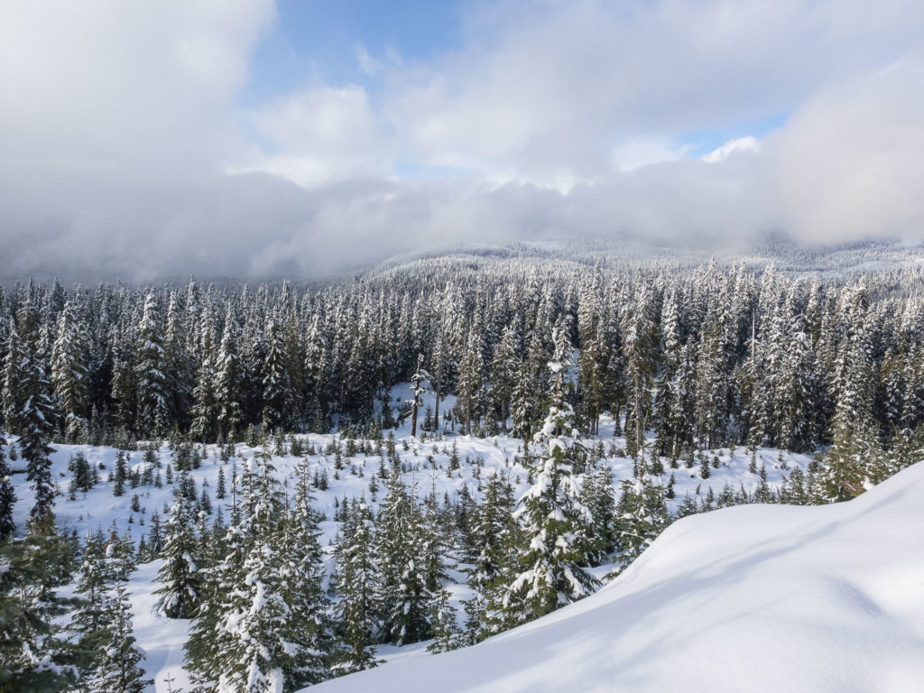 Canadian Wilderness Adventures Snowmobiling